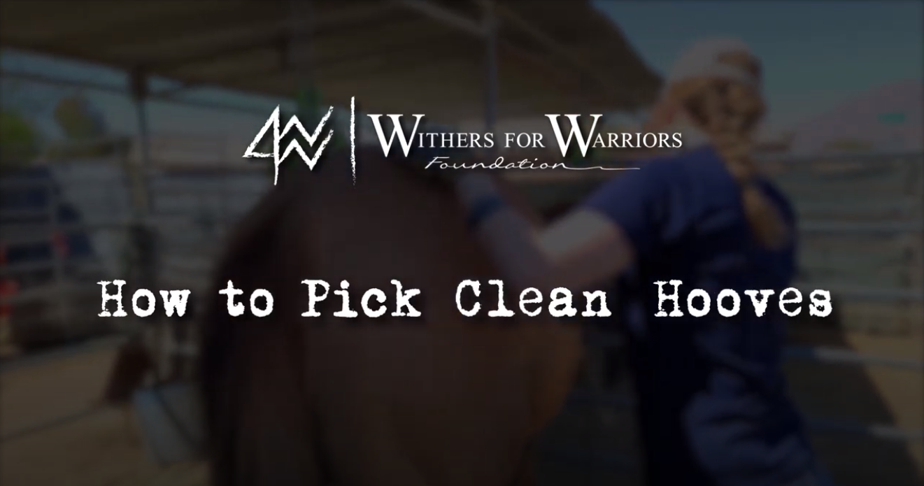 W4WF: How to Pick Clean Hooves