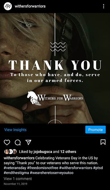 Withers for Warriors Foundation: IG Veterans Day